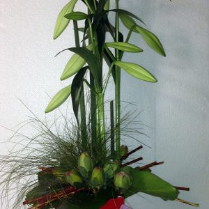 red-nest-corporate-arrangement