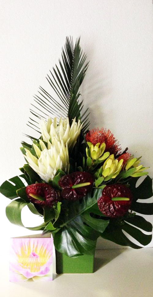 White King Protea and Anthrurium