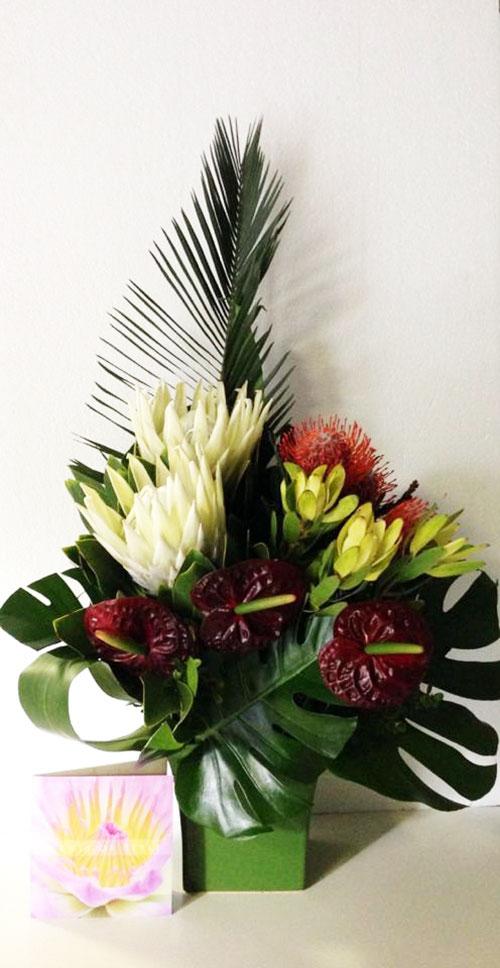 White King Protea and Anthrurium