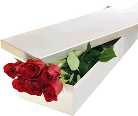 6 Premium Red Roses
