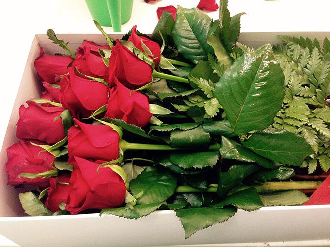 Dozen Red Roses in Presentation Box