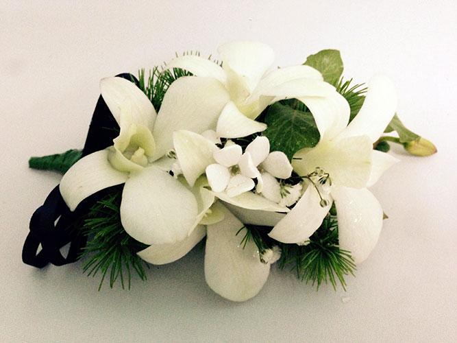 Lavish White