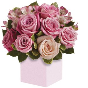 Indulgence rose box